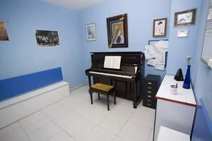 Aula de piano e instrumentos de cuerda